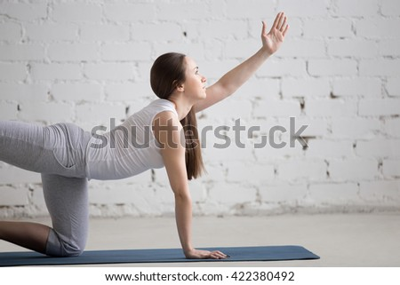 Portrait of attractive young woman working out indoors. Beautiful model doing exercises on blue mat in room with white walls. Bird-dog or kneeling opposite arm and leg extension (chakravakasana)