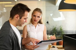 Portrait of biz people planning work. Serious cute woman in white blouse showing documents and discussing with businessman new project. Teamwork and business concept