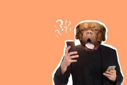 Portrait of businessman with dog head. Art collage with a dull businessman. Concept is fashionable or incomprehensible man. Contemporary art design on topic doing business. Dog man in business suit