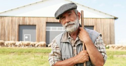Portrait of Caucasian senior handsome man shepherd in hat standing outdoors, leaning on stick, looking down and rising face to camera. Old male farmer at his land. Close up.