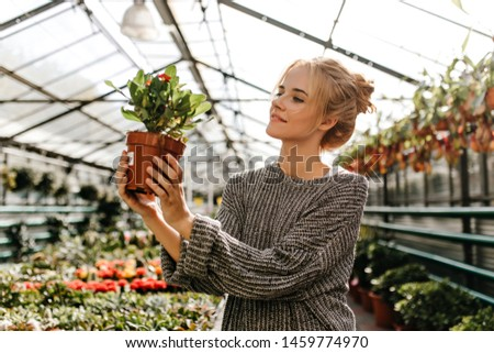 Portrait of charming lady in gray outfit looking at plant with red flowers with interest. Girl with bun is posing in greenhouse