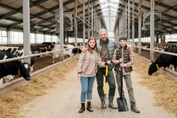 Portrait of content contemporary family of farmers standing with work tools in large cowshed
