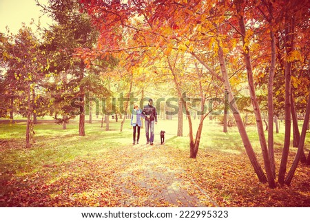 Portrait of couple with dog walking together autumn fall season