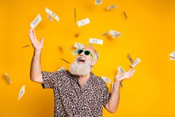 Portrait of crazy funky funny oold bearded man hipster in green eyeglasses eyewear look up at money falling scream great win lottery wear leopard stylish shirt isolated over yellow background