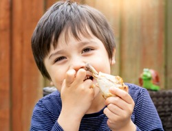 Portrait of cute boy with yummy face enjoy eating roasted chicken drumstick in the garden, Happy kid eating grilled chicken, Healthy food for children concept