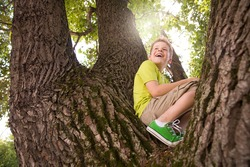 Portrait of cute kid boy sitting on the big old tree on sunny day.  Child climbing a tree. little boy sitting on tree branch. Outdoors. Sunny day. Active boy playing in the garden. Lifestyle concept
