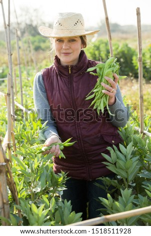 Portrait of female owner of plantation holding armful of broad beans