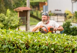 Portrait of Gardener cuting hedge with an electric hedge trimmer