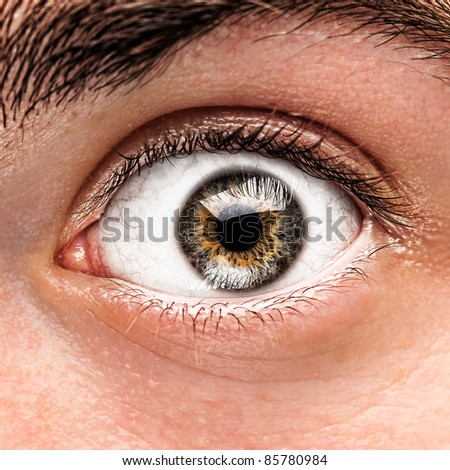 portrait of green and brown eye of young man - stock photo