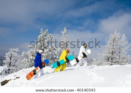 Portrait of group of sportsmen with snowboards walking down snowdrift