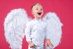 Portrait of happy smiling little curly blond Angel boy. Angelic child. Toddler wearing angel white dress costume and feather wings. Consept of innocent child
