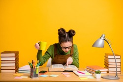 Portrait of her she attractive focused knowledgeable brainy diligent woman nerd reading book finding solution drinking caffeine isolated bright vivid shine vibrant yellow color background