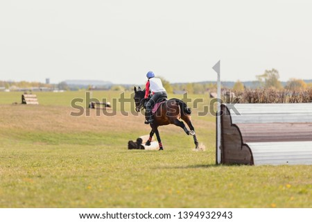 portrait of horse and rider during eventing competition