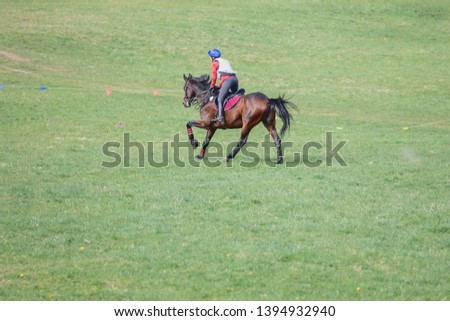 portrait of horse and rider galloping during eventing competition