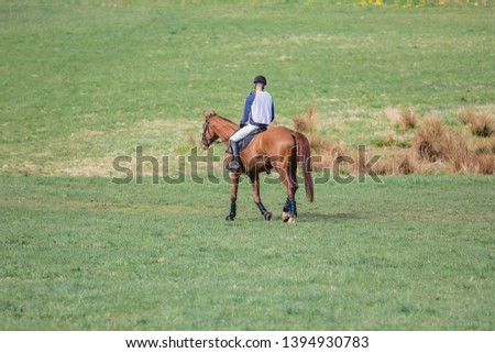 portrait of horse and rider losing eventing competition