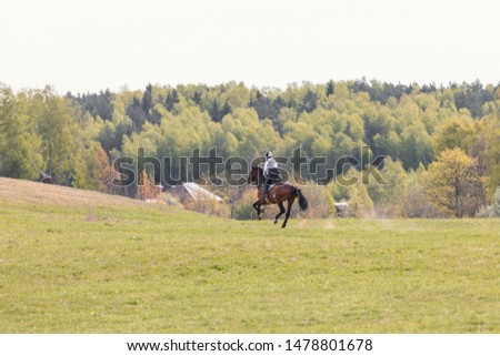 portrait of horse gallop during eventing competition