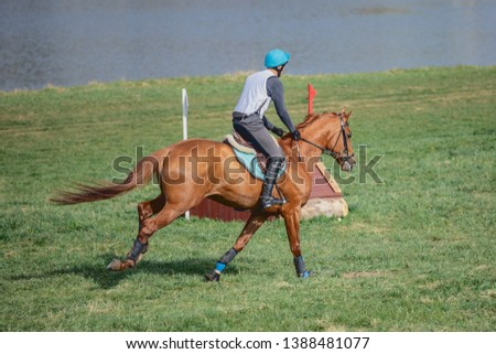 portrait of horse galloping during eventing competition