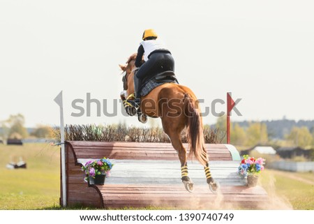 portrait of horse jumping during eventing competition