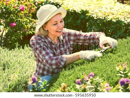 Portrait of joyful senior woman taking care of green plants in the garden #595635950