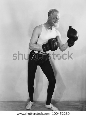 portrait of mature boxer