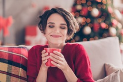Portrait of positive lady smell aromatic coffee cup sit couch in house indoors with christmas x-mas atmosphere decoration wear jumper