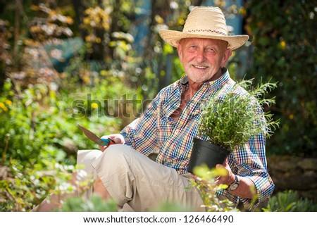 Portrait of senior man in the garden #126466490