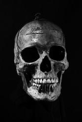 portrait of skull on black