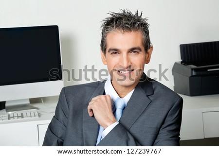 Portrait of smart mid adult businessman at office