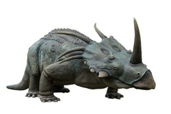 Portrait of styracosaurus isolated on white background.Styracosaurus is an herbivore dinosaur lived in cretaceous period