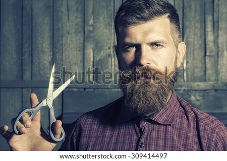 Portrait of unshaven man in violet checkered shirt with long beard and handlebar moustache holding sharp scissors looking forward standing on wooden wall background, horizontal picture