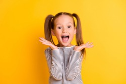 Portrait of young excited shocked crazy smiling girl child kid hold hands isolated on yellow color background