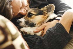 Portrait of young man embracing his pet. Cute Welsh Corgi puppy resting with owner, spending time together at home. Concept friendship with dog and human, cute moments, relaxing, carefree.