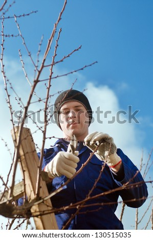 Portrait of young man pruning apricot brunches with the pruner