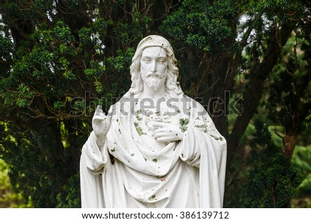 Portrait photo of Jesus Christ statue and pine on the background