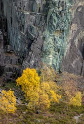 Portrait view of rockface at Dinorwig quarry with autumn colours