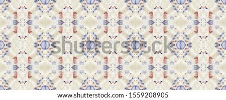 Portuguese Decorative Tiles. Portuguese Decorative Tiles Background. Plant Batik Decor. Spring Spanish Pattern. Modern Arabic Ornate. Daisy Colorful