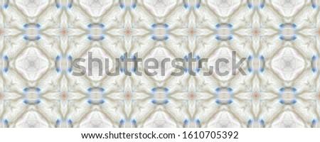 Portuguese Decorative Tiles. Portuguese Decorative Tiles Background. Plant Fine Pattern. Spring Indian Decor. Kaleidoscope Damask Texture. Flora Cute