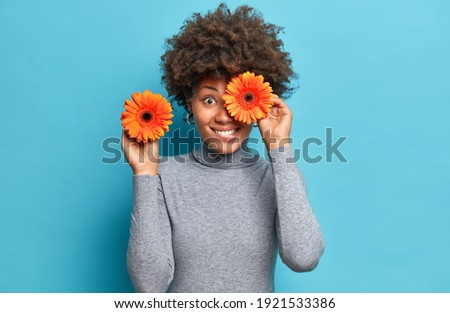 Positive dark skinned woman holds orange gerberas covers eye poses with favorite flowers dressed in casual grey turtleneck isolated over blue background. Female florist going to make bouquet Foto d'archivio ©