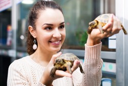 Positive female customer watching two small tortoises in petshop