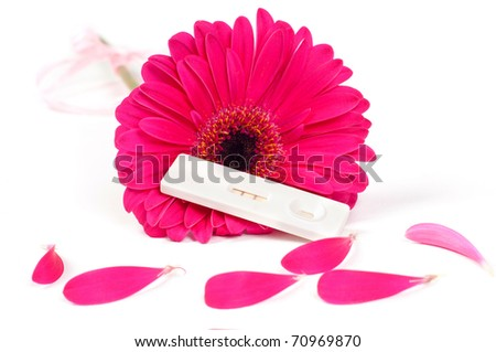 Positive pregnancy test and gerbera