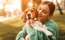 Positive young female in green sweater hugging friendly beagle dog enjoying happy moments together while walking in green park in sunny day