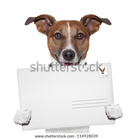 post envelope mail stamp dog with letter