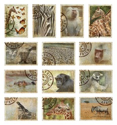 Postage stamps with Africa animals and nature symbols. Vintage style. Africa protect wild life concept. Isolated on a white background