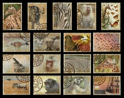 Postage stamps with Africa animals and nature symbols. Vintage style. Africa protect wild life concept. Isolated on a black background
