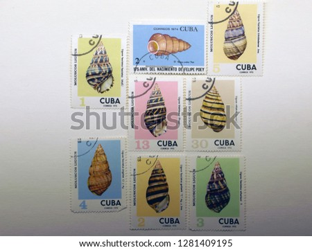 postage stamps with shells                                #1281409195