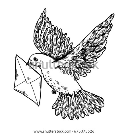 Postal dove with letter raster illustration. Scratch board style imitation. Hand drawn image.