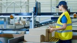 Postal Sorting Office Workers Put Cardboard Boxes on Belt Conveyor