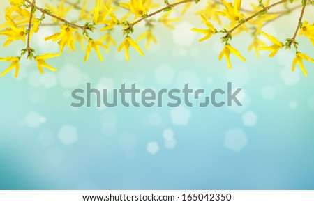 Postcard with fresh flowers and empty place for text. Abstract background for design.