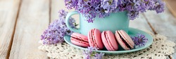 Postcard with violet lilac bouquet in a blue cup and delicious french macarons. Template for birthday card, Mother's Day, Saint Valentine's day, 8 March, Women's Day. White background banner