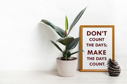 Poster with quote DONT COUNT THE DAYS; MAKE THE DAYS COUNT. Home plant ficus in a pod in a Scandinavian-style interior. White, minimalism. copy space